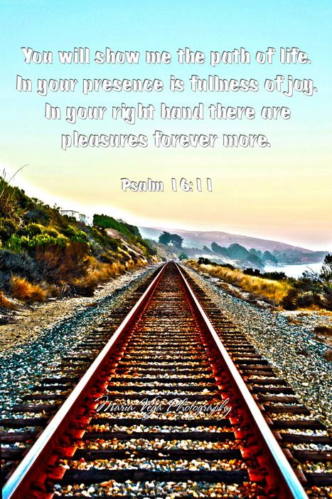 Psalm_16_11_resize